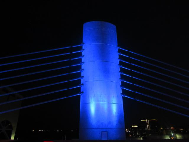 Inaugural Lighting of the Pearl Harbor Memorial Bridge July 3, 2016